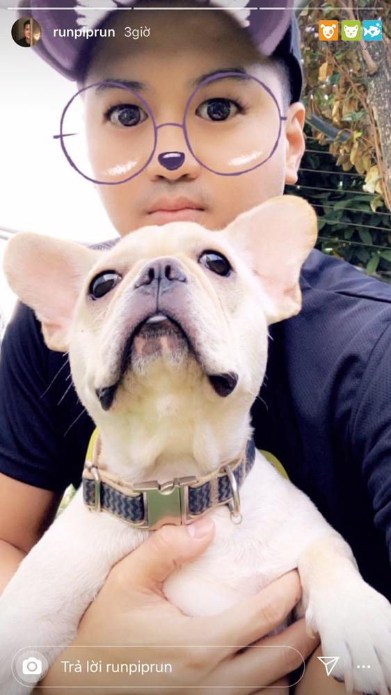 Linh rin yêu thú cưng phillip nguyễn yêu thú cưng - pet plaza