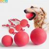 Bóng tập cao su tập cho chó tại Pet Plaza