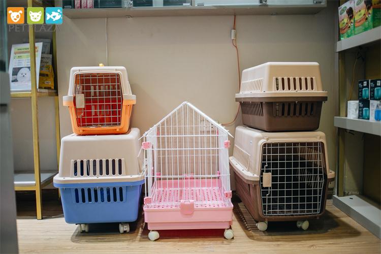 khách sạn cho thú cưng - pet plaza