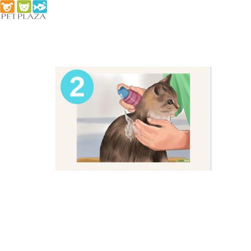 nên dùng sữa tắm nào cho mèo - phụ kiện thú cưng