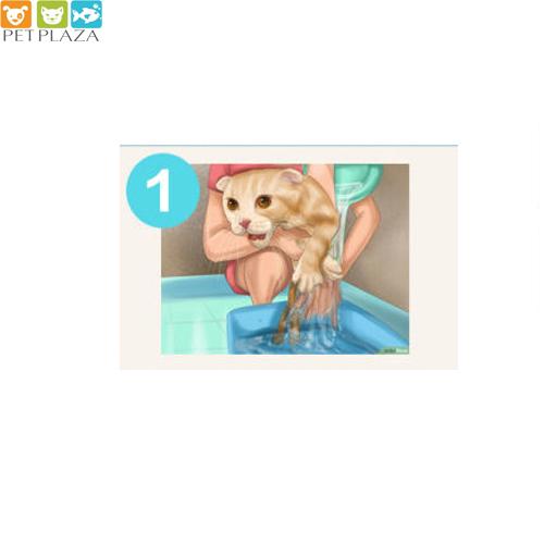 cách tắm cho mèo bằng sữa tắm sos - phụ kiện thú cưng