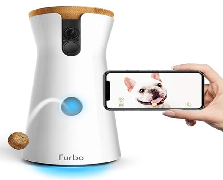 Camera cho thú cưng tại Petplaza