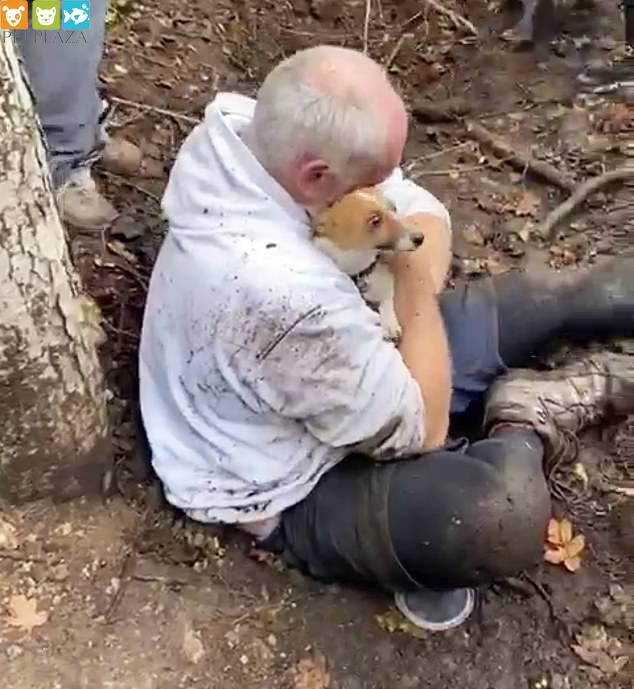 Cụ ông Alan Whitton bật khóc khi gặp lại chú chó Mitzi sau hai ngày mất tích