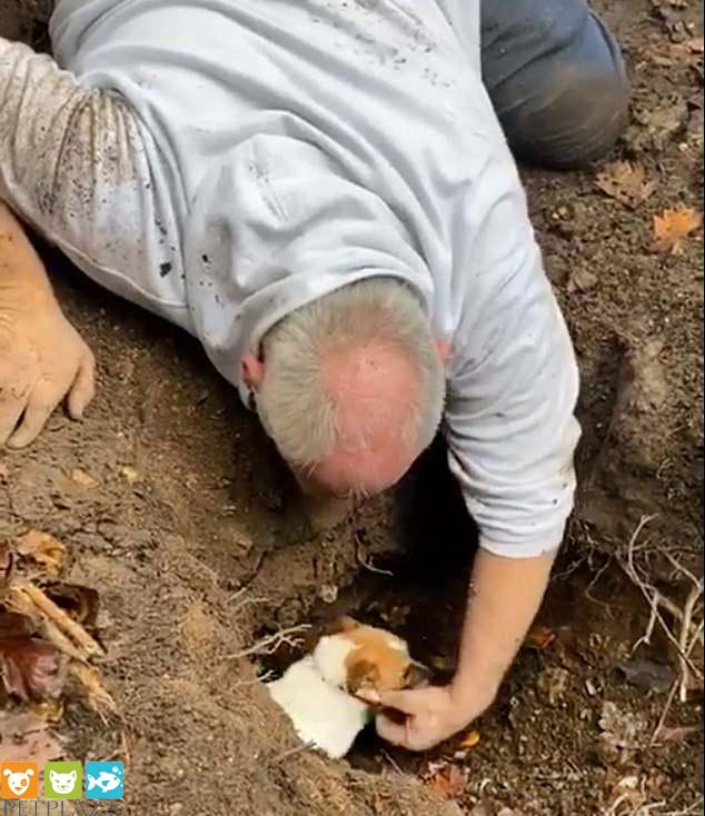 Cụ ông Alan Whitton bật khóc khi gặp lại chú chó Mitzi sau hai ngày mất tích - phụ kiện thú cưng Pet Plaza