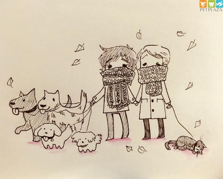 Đặt tên cho chó hay may mắn bằng tiếng Việt và tiếng nước ngoài - phụ kiện chó mèo Petplaza