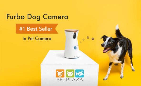 furbo dog camera cho thú cưng - phụ kiện thú cưng Pet Plaza