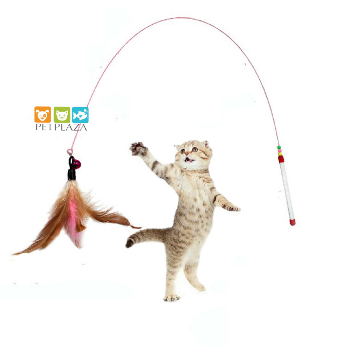 Hướng dẫn sử dụng cần câu mèo