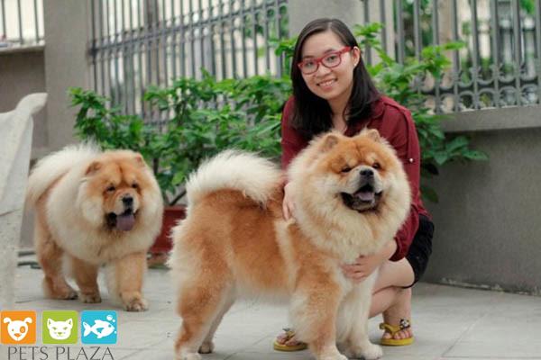 Khánh Vi và thú cưng của mình.