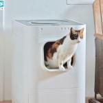 Nhà vệ sinh thông minh Lavviebot cho mèo tại Pet Plaza
