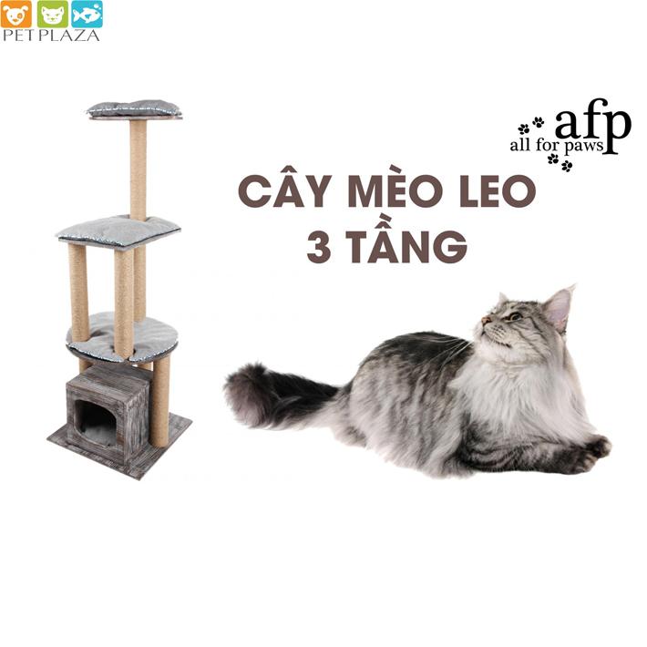 Cây mèo leo và đồ cào móng - phụ kiện thú cưng Pet Plaza