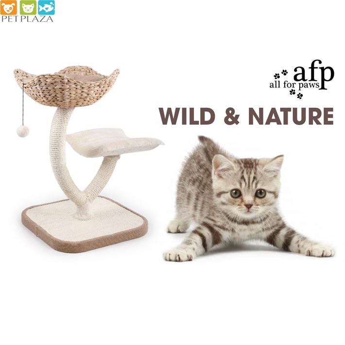 Cây mèo leo 3 tầng All for paws - Phụ kiện thú cưng chó mèo Petplaza