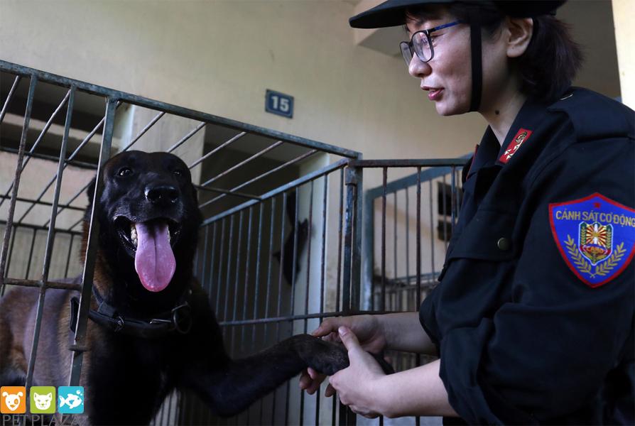 Nữ cảnh sát cở động huấn luyện chó Béc Bỉ tên Ky