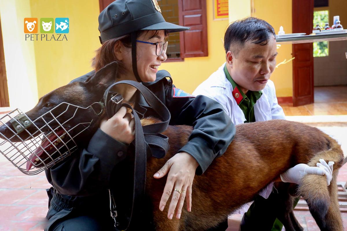 Nữ cảnh sát huấn luyện chó nghiệp vụ béc bỉ - chăm sóc thú cưng