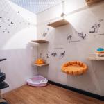 khách sạn cho thú cưng pet hotel - phụ kiện thú cưng pet plaza