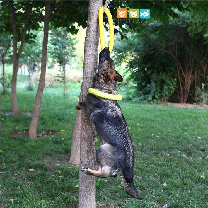 Vòng cao su đồ chơi huấn luyện tập cắn cho chó