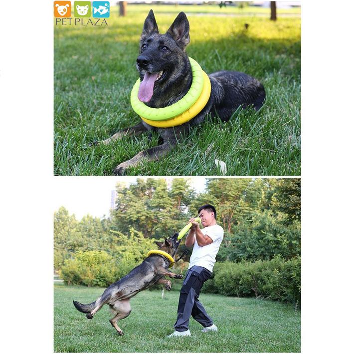 Vòng cao su huấn luyện chó becgie đồ chơi cho chó