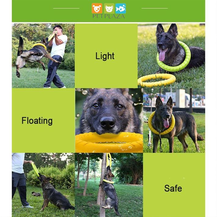 Vòng cao su huấn luyện chó mèo và thú cưng